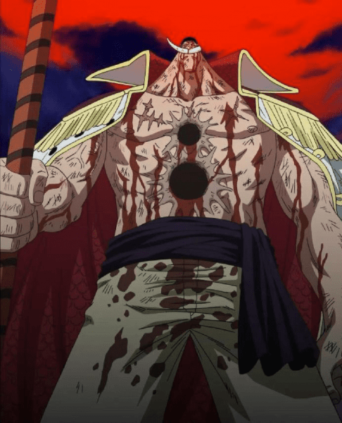 whitebeard-died-in-war-luffy